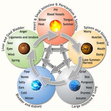 Five Element Basics