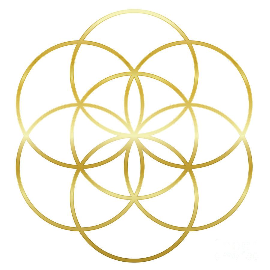 Beth Edgell | VortexHealing® | Shiatsu | Qigong | Meditation